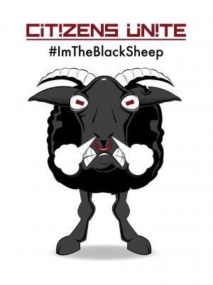 Black Sheep-c41.jpg
